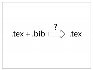 Inserting .bib into .tex for a single source file